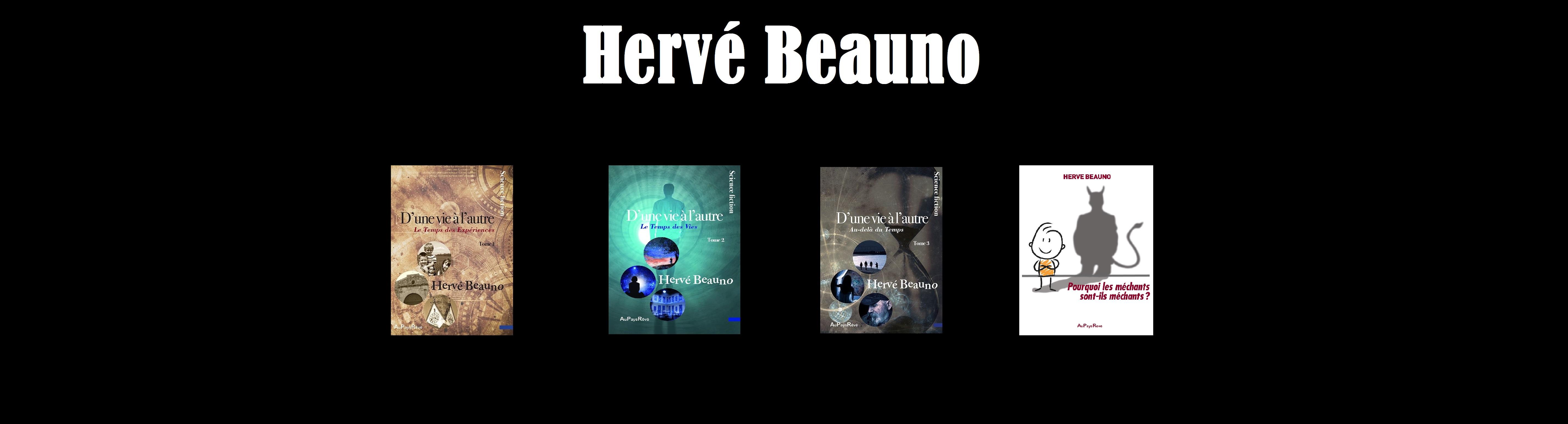 Herve beauno - Bandeau - site - 2019 - Mars